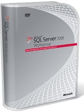 Microsoft SQL Server Workgroup CAL 2008 R2